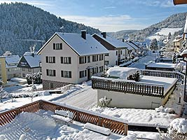 Winter in Tennenbronn 2010