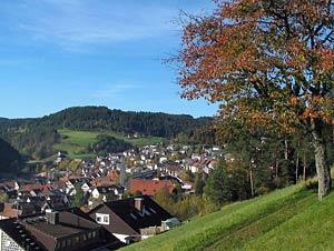 Sommermoos und Dorfberg